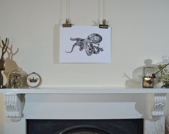 Hand-drawn octopus illustration