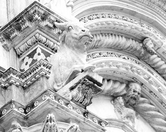 bull statue, Siena, Italy, Siena cathedral, Italian home decor, Italy photography, Italian architecture, large wall art, Romanesque-Gothic