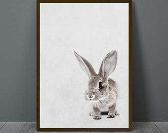 Rabbit Nursery Print, Rabbit Nursery Wall Decor, Rabbit Nursery Poster, Rabbit Nursery, Animal Print Wall Decor, Printable Rabbit Wall Art