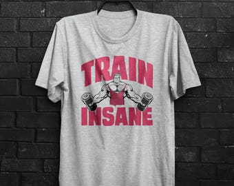 Train Insane Fitness Motivation Gym Bootcamp Bodybuilding Crossfit Cross Fit Mens & Women's T-shirt Top Tee Shirt All Sizes And Colours