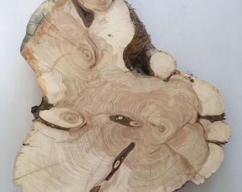 "21""x16"" x 3 inch Cedar Wood Slab"