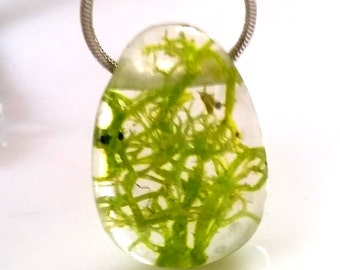 Trailer, Iceland Moss in resin cast, trailers of MOSS, Moss, green, Resinanhänger. Jewellery charms