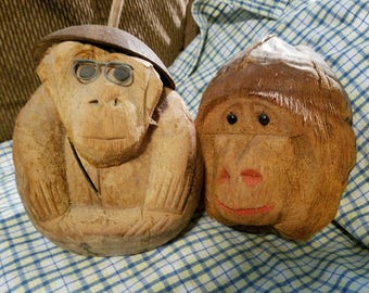 What a lovely pair of coconuts