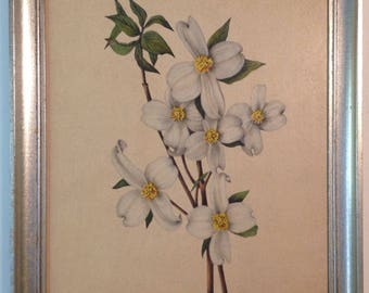 Vintage dry mounted lithograph of white flowering dogwood branch in silver toned shabby chic wood frame