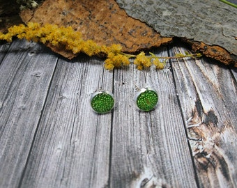 Synthetic-resin - silver Stud Earrings with transparent resin and small green beads (226) - resin