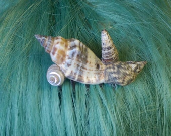 Small Shell Hair Comb