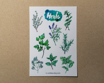 Herb Sticker Sheet (Basil, Lavender, Mint, Rosemary, Parsley, Oregano, Thyme, Dill)