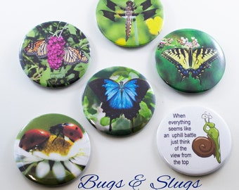Bugs & Slugs Collection