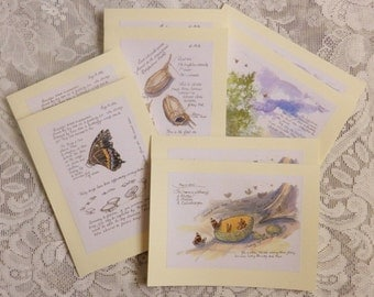 Insect Art,  Greeting Cards, insect art, bug cards, butterflies, bees, cocoon, sketchbook pages, artist notes, artist sketches