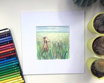 Dog and Frog print, Original illustration, Dog drawing, Dog illustration, Dog gift, Dog lover print, dog illustration, lurcher dog, lurcher,