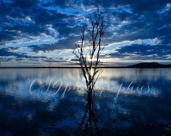 sunset - blue sunset - Fine Art Blue Sunset Photographic Print