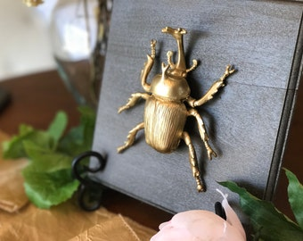 Insect Home Decor, Gold Faux Insect Taxidermy, Home Decor, Wall Art