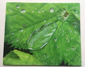 Water on Leaf Acrylic Painting 10x12""