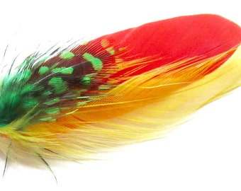 Beautification jewel, all 3 feathers, red, yellow
