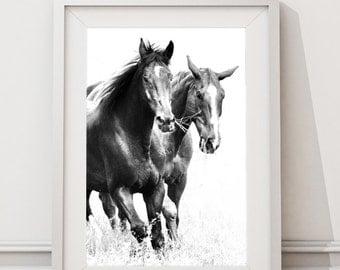 Black Horses, Instant Download Large Art Prints, Modern Minimalist Scandinavian wild life Horses Black and White Photography, Running Horses