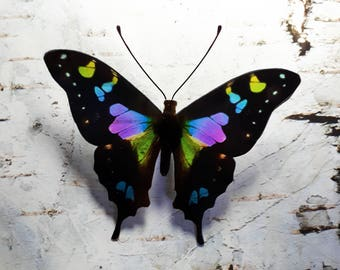 Purple Spotted Swallowtail 3D Butterfly decoration/decal