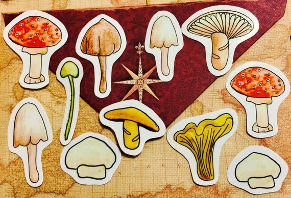 Magic Mushroom stickers, vegan stickers,nature planner stickers, mushroom scrapbook stickers, vegetarian stickers, chef stickers, food