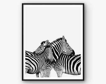 Zebra Wall Art safari wall art | etsy