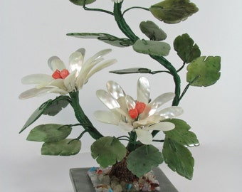Pearl coral and jade plant with flowers