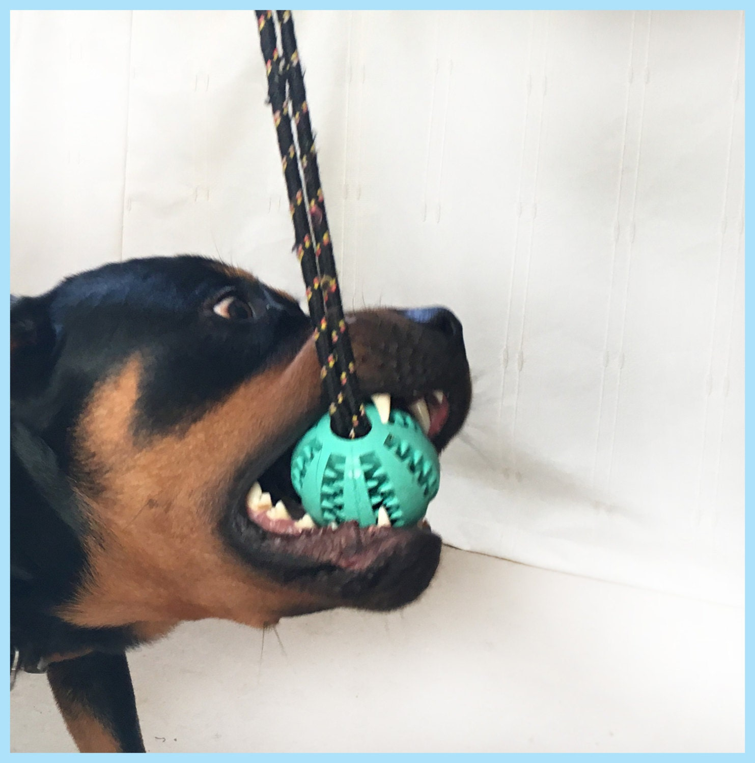 Super tough teeth cleaning dog toy made from durable safe for Super tuff dog toys