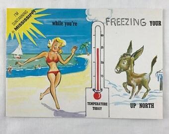Vintage 1974 Mississippi Postcard-Freezing Your #ss Off Up North-Retro Funny Postcard