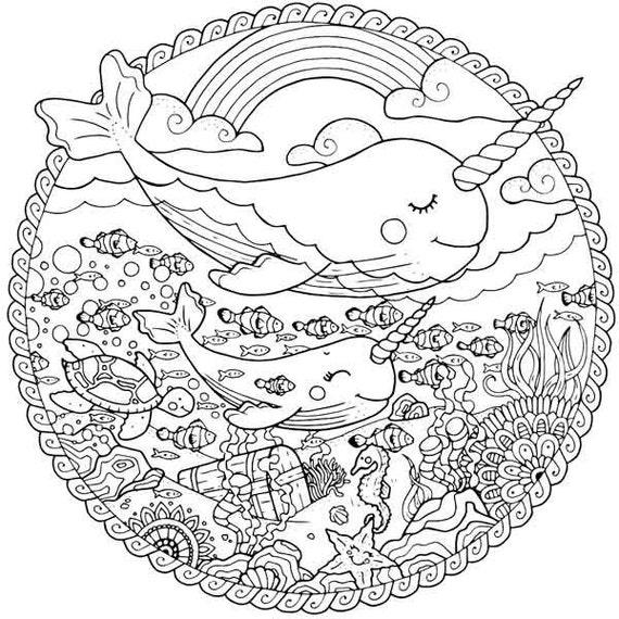 Narwhal coloring page for adults