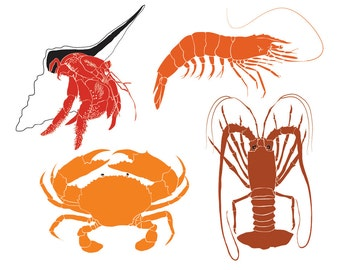 Crustacean clip art images of Prawn, Mud Crab, Lobster and Hermit Crab, marine life vectors - instant download