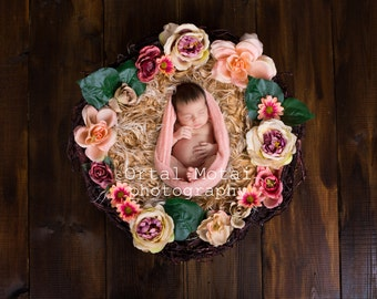 digital newborn backdrops, digital backgrounds, newborn photography prop,newborn wreath, Digital download, digital nest, Instant Download,