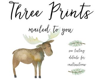 THREE Prints, Printed By Me, Mailed To You, Little Bug Prints Co., Print Services, Add To Your Digital Order(s)