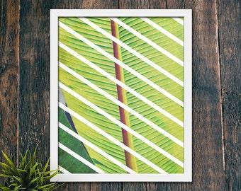 Minimalist Geometric Wall Art, Leaf Wall Art Print, Modern Tropical Print, Contemporary Modern Decor PRINTABLE, Beach Art Prints (#16197)