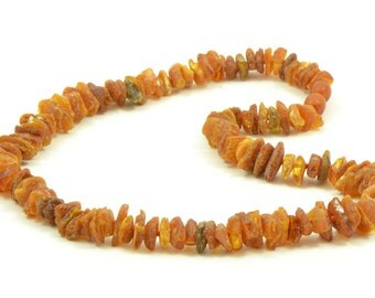Baltic Amber Pet Collar with screw Clasp, Genuine Baltic Amber Beads, Natural Flea and Tick Protection for Dogs And Cats, Various Sizes
