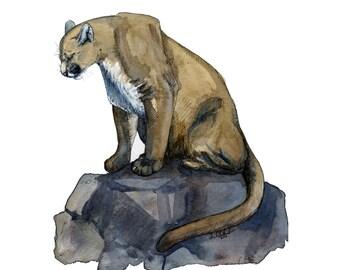 cougar artwork, cougar art print, cougar gift idea, cougar art, cougar decor, cougar wall art, wildlife art, art print, saltwatercolors