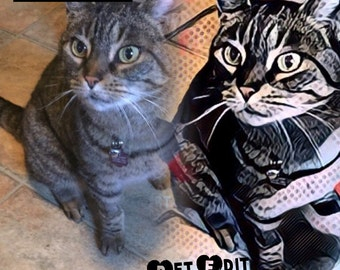 Purrrrfect Pet Edits