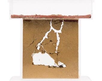 Ameisenfarm T Acryl (Ameisen mit Königin FREE)(Ant farm, Formicarium, Ants)
