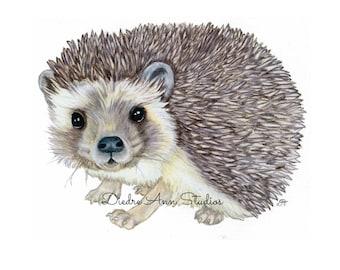 Hedgehog Nursery Fine Art Print - SKUWC105