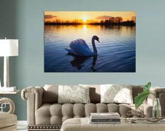 A swan on a lake Canvas print, Canvas Print. wall art,  Swan art,  Swan Wall art, canvas print, large canvas, Interior design, wall decor.