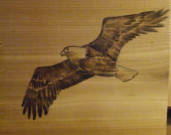 wood-burning artwork eagle