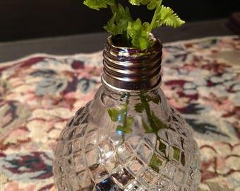 Upcycled Little Bulb Vase Flower Bulb Herb Vase