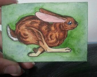 Mini Rabbit Magnet