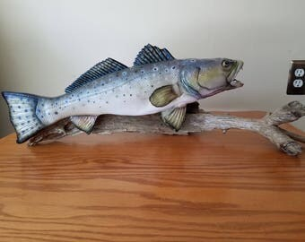 Spotted Sea Trout (Replica)