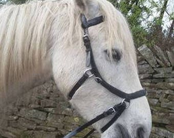 Black Extra full  Biothane Micklem style bridle bitless sidepull size EXTRA FULL with reins