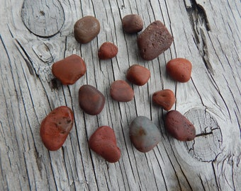 Beach Collection Pebbles in Rare Shades of Orange