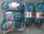 5 balls Caron Simply Soft Paints Acrylic Yarn in Blue Green - Destash