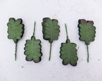 50 mulberry paper fern leaves