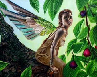 Tree Fairy - Fine Art Print - 14x9