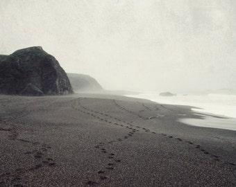 "Beach ocean photography print, monochrome wall art California coast art charcoal gray nature home decor ""Foggy Beach Walk"""