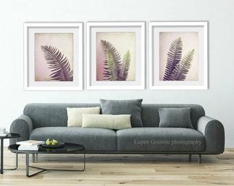 "Three prints - fern leaves nature wall art - pink green botanical leaf photographs  ""Fern Leaves Set of Three"""