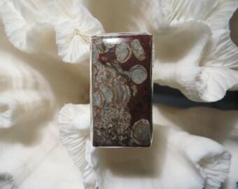 Beautiful Layered Mushroom Rhyolite Lichen  Ring Size  7