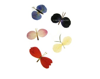 BUTTERFLIES - Pressed flower art, garden notecard - Blank whimsical botanical card for any occasion - Hydrangea, blanket flower, pansy