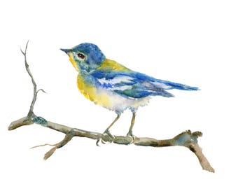 Northern parula watercolor painting- Archival print- Northern parula art-  bird lovers gift- birders gift- blue songbird